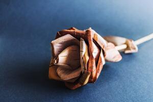 Wood Ornament Gift Sets